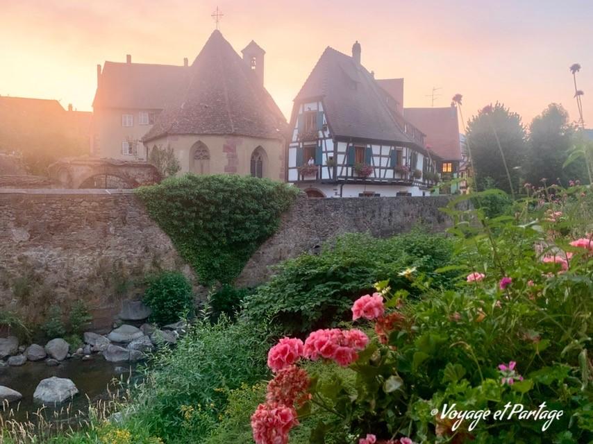 Visite de Kaysersberg et Colmar avec dégustation le 29 juillet 2020